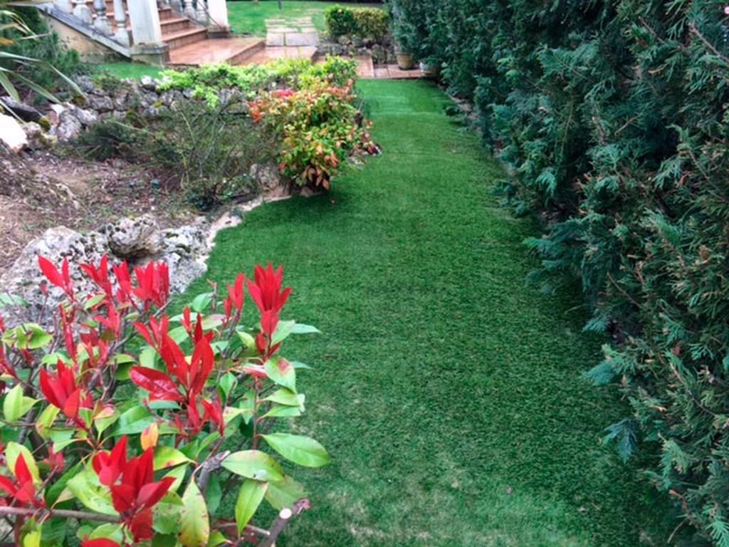 jardines limpios en Teulada