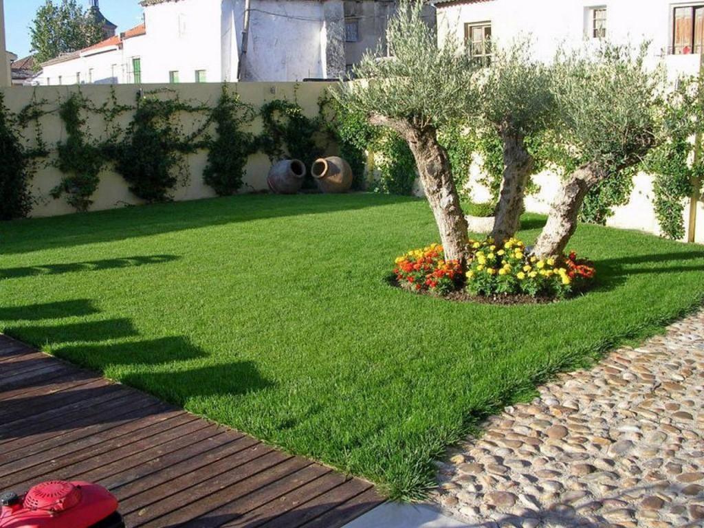 Poda arboles y palmeras Xabia Alicante