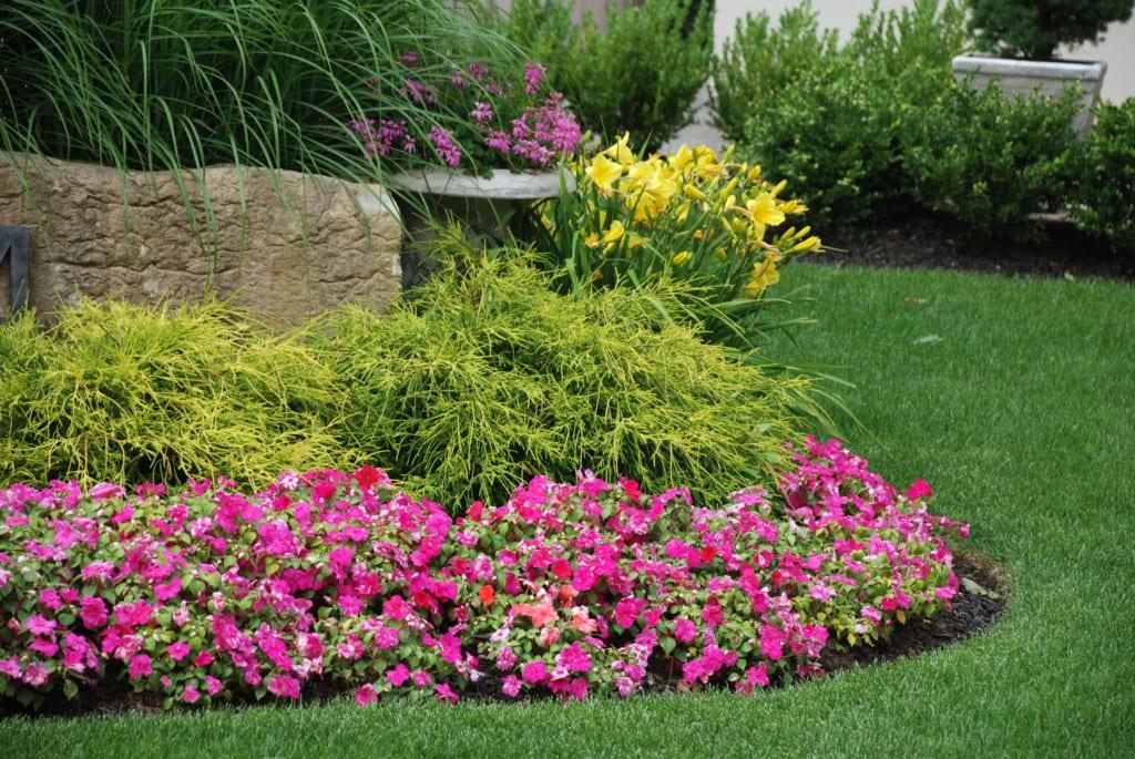 creacion jardines profesional