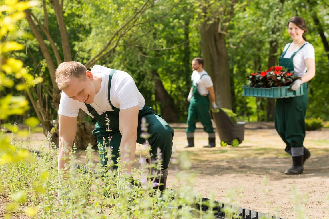 garden cleaning Xabia